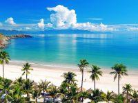 Cho thuê căn hộ ngắn ngày tại Nha Trang